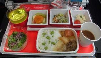 in-plane-meal