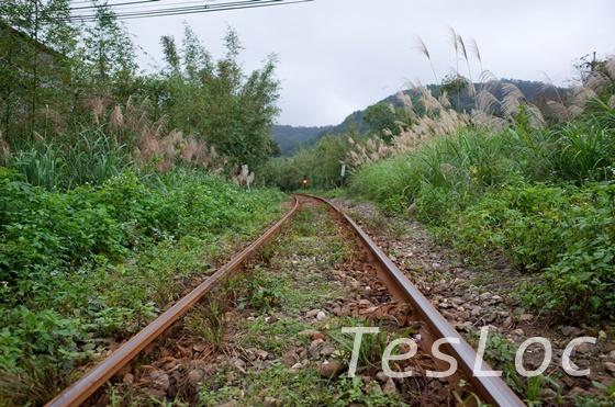 十分人気のない線路