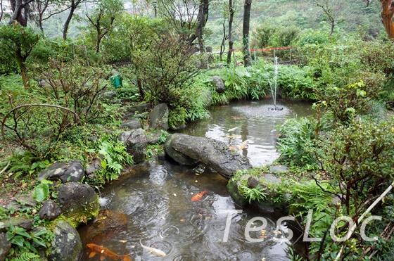 金瓜石の太子賓館庭園