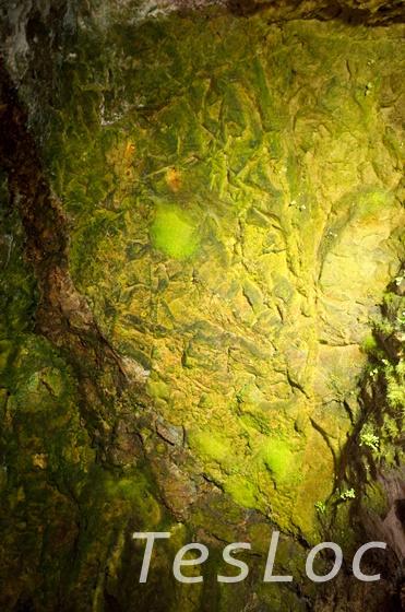 金瓜石本山五坑内の金を含有する岩