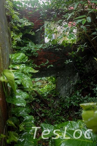 金瓜石の廃墟1