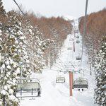東京から手ぶらで日帰りできて、北海道並みの雪質が楽しめるスキー場🎿がある!?