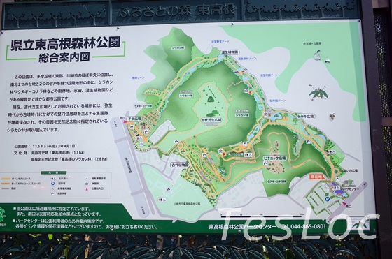 東高根森林公園の園内マップ