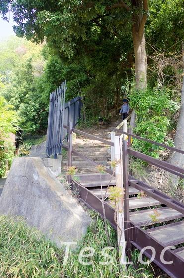 ピクニック広場につながる階段