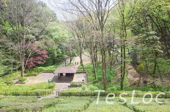 東高根森林公園の見晴台の眺め