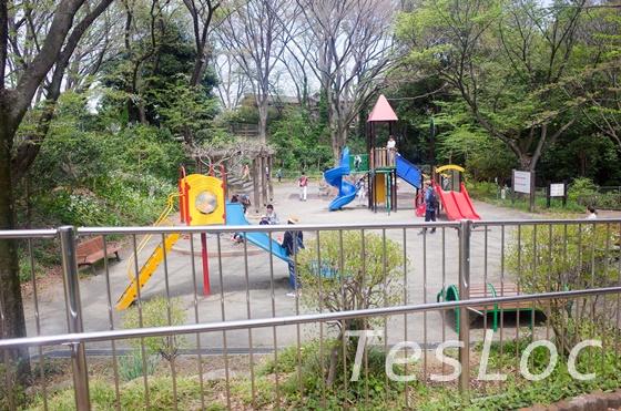 東高根森林公園の子供向け遊具エリア