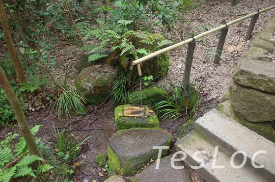 等々力渓谷の湧き水汲み場