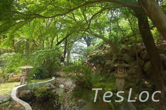 等々力渓谷の日本庭園
