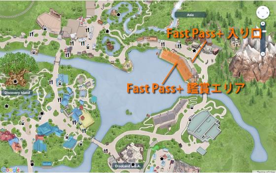 アニマルキングダムRivers of Light Fast Pass+の鑑賞エリア
