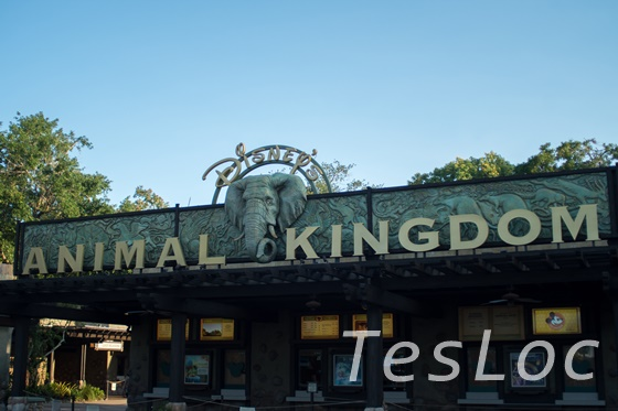 WDWアニマル・キングダムのゲート