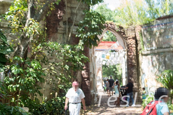 WDWアニマル・キングダム「マハラジャ・ジャングル・トレック」遺跡